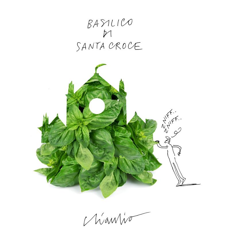 basilico-di-santa-croce-3l