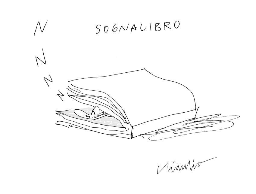 sognalibro-2l